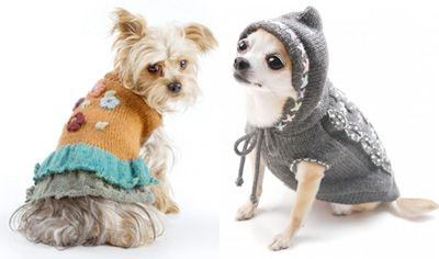 вязаная одежда для собак щенки