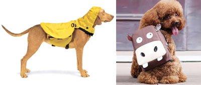 Рюкзаки на собак рюкзаки кмс нато